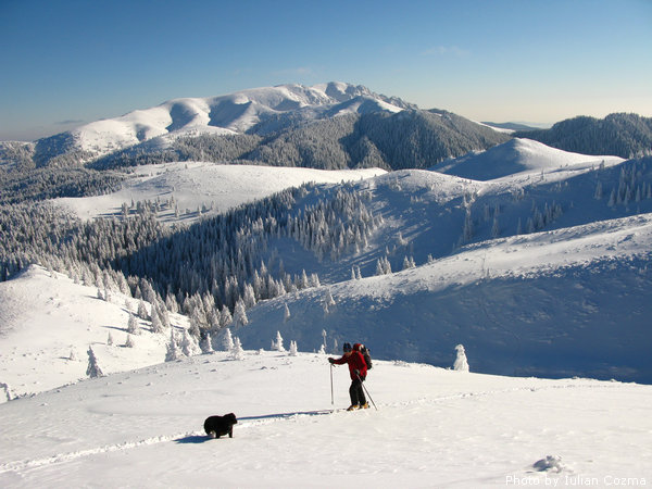 Ski touring in Ciucas mountains