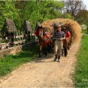 Walking in Maramures county