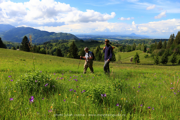 Traveler to Romania, walking in Transylvania and Maramures counties
