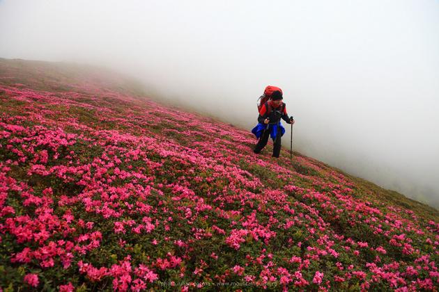 Wandertour in Siebenbürgen Gebirge, Landschaft von Rumänien
