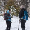 When the going gets tough, the tough get going, snow walking in Transylvania