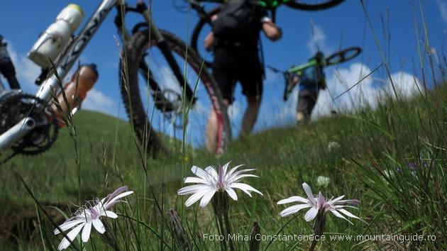 Wetterfest Mountainbiken in Rumänien