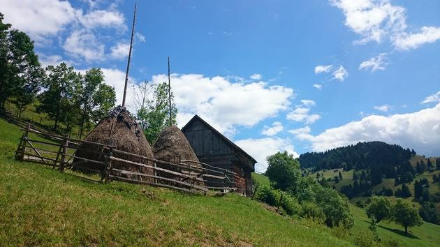 Explore Karpaten, Piatra Craiului and Bucegi in Transylvania